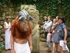 Minotaurus a ti druzí 1