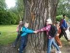 Stromy vyprávějí 1