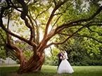 Svatba na zámku - Standard 5