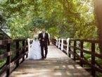 Svatební fotogalerie 3