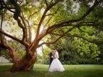 Svatební fotogalerie 7