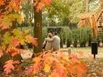 Manželská láska 5