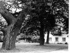 Historie zámku Loučeň 3