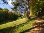 Zámecký park 9