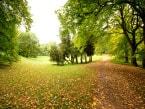 Zámecký park 1