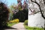 Rozkvetlé stromy v zámeckém parku obr.3