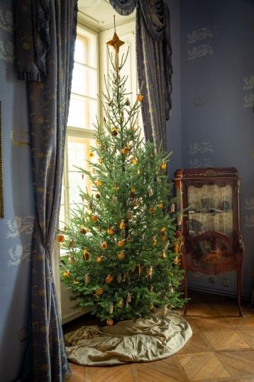 Příběh vánočního stromečku loňský rok obr.4