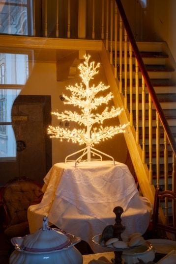 Příběh vánočního stromečku loňský rok obr.3