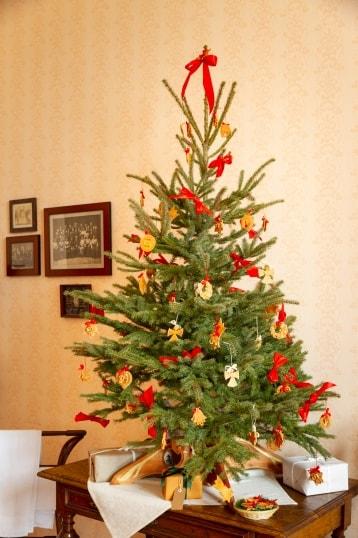 Příběh vánočního stromečku loňský rok obr.2