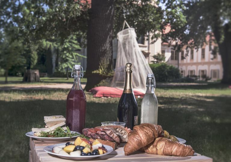 Den pikniků